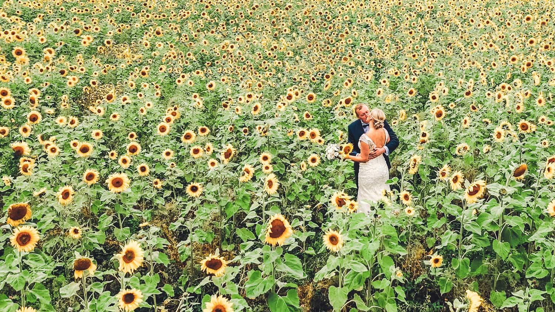 Pruutpaar päevalillepõllul pulma fotograaf ja videograaf oulma